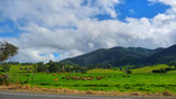 Picture relating to Tilba Tilba - titled 'Tilba Tilba countryside, green and lush perfect for the dairy cows'