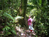Picture relating to Pile Valley - titled 'Pile Valley'