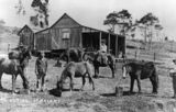 Picture relating to Maleny - titled 'Life on the farm at Maleny, 1900-1910'