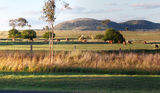 Picture relating to Boat Mountain - titled 'Boat Mountain area from Murgon, Queensland'