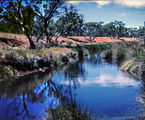 Picture of / about 'Boniah Creek' South Australia - Boniah Creek