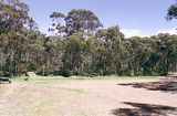Picture relating to Marong - titled 'Marong State Forest: Bullock Picnic Ground'