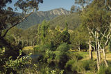 Picture relating to Mount Buffalo National Park - titled 'Mount Buffalo National Park'