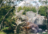 Picture relating to Dergholm State Park - titled 'Dergholm State Park: Baileys Rocks'