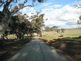 Picture relating to Gundaroo - titled 'Tallagandra Lane'