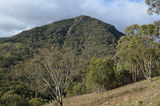 Picture relating to Burrinjuck Nature Reserve - titled 'Burrinjuck Nature Reserve'