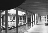 Picture of / about 'Canberra' the Australian Capital Territory - Verandahs of the Canberra Community Hospital