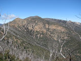 Picture relating to Tidbinbilla Range - titled 'Northern face of Mount Tidbinbilla'
