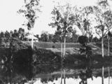 Picture relating to Mary River - titled 'Cleared scrubland, Mary River, Queensland'