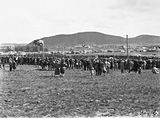 Picture relating to Canberra - titled 'Anzac Day 1929, Australian War Memorial site, Canberra - Spectators watching the March Past, Civic Centre in the background.'