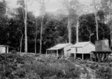 Picture relating to Canungra - titled 'Canungra Sawmills, ca. 1913'