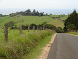 Picture relating to Illawarra Range - titled 'On  the road to Saddleback Mountain 7'