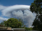 Picture relating to Chichester Range - titled 'Firestorm: Darling Ranges WA 2005'