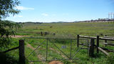 Picture relating to Parkwood Horse Paddock - titled 'Parkwood Horse Paddock'