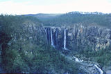 Picture of / about 'Blencoe Falls' Queensland - Blencoe Falls