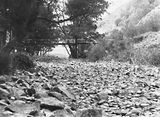 Picture relating to Cotter Dam - titled 'Cotter River below the Cotter Dam wall and the footbridge over the river. Low water flows in drought.'
