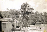 Picture relating to Long Island - titled 'Long Island --Nth Qld-1953'