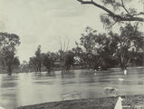 Picture relating to Cunnamulla - titled 'Warrego River at Cunnamulla during floods, ca. 1890'