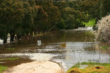 Picture relating to Mount Emu Creek - titled 'Mount Emu Creek'