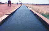 Gibb River Road 400m long drinking trough on Kimberley Downs station.