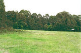 Picture of / about 'Toombullup' Victoria - Toombullup State Forest: Stringybark Creek camp ground