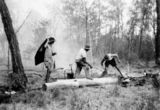Picture relating to Goovigen - titled 'Firefighting in the Goovigen district, Queensland, 1952'