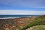 Picture relating to Greens Beach - titled 'View to Low Head from Greens Beach'