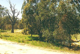 Picture of / about 'Mooroopna Murchison Road' Victoria - Mooroopna Murchison Road