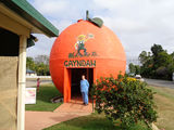 Picture relating to Gayndah - titled 'Gayndah Big Orange at the Big Orange Cafe'
