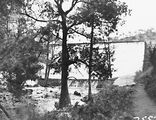 Picture relating to Cotter Dam - titled 'Cotter Dam wall, spillway and stilling pond viewed thru Casuarina trees.'