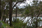 Picture relating to Lake Avon - titled 'Lake Avon Dam Wall at a distance'