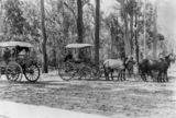Picture relating to Kilcoy - titled 'Caboolture to Hopetoun (Kilcoy) Coaches, 1906'