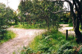 Picture relating to Blanket Bay - titled 'Blanket Bay Camp Ground; Otway National Park'