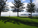 Picture relating to Port Lincoln - titled 'Port Lincoln'