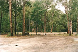 Picture relating to Bunyip State Park - titled 'Bunyip State Park: Camphore Camp/Picnic ground'