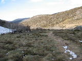 Picture relating to Thredbo Village - titled 'Walking track from Thredbo Village to Dead Horse Gap'