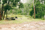 Picture relating to Crawford River Regional Park - titled 'Crawford River Regional Park: Youngs Hole camp ground'