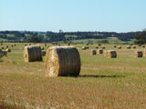 Picture relating to Chichester Range - titled 'Hay Bales near Williams, WA'