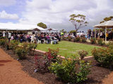Picture relating to Meckering - titled 'Meckering Rose Garden Official Opening'