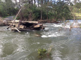 Picture relating to Nymboida River - titled 'Moonpar Bridge Nymboida River'
