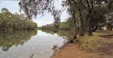 Picture relating to Nyngan - titled 'Bogan River Nyngan'
