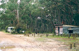 Picture relating to Grampians National Park - titled 'Grampians National Park: Stachans Camp Ground'
