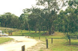 Picture relating to Mount Granya State Park - titled 'Mount Granya State Park - Cotton Tree camp ground'