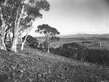 Picture relating to Ainslie - titled 'Part of Reid from Mt Ainslie. Old Parliament House on the left.'