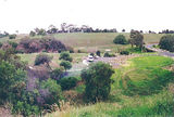Picture relating to Werribee River - titled 'Werribee River; Exford Park'