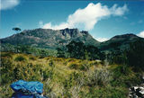 Picture of / about 'Cradle Mountain-Lake St Clair National Park' Tasmania - Cradle Mountain-Lake St Clair National Park