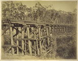 Picture relating to Brushy Creek - titled 'Brushy Creek railway bridge on the Bundaberg line, ca. 1882'