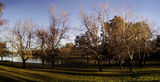 Picture relating to Lake Ginninderra - titled 'Lake Ginninderra Foreshores'