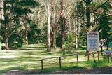 Picture relating to Tyers Junction - titled 'Tyers Junction; Caringal Scout Camp; Tanjil-Tyers State Forest'