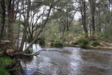 Picture of / about 'Mole River' New South Wales - Mole River